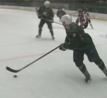 Hokej Zh